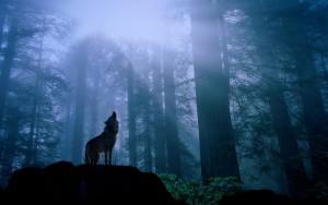 人狼-1024x640